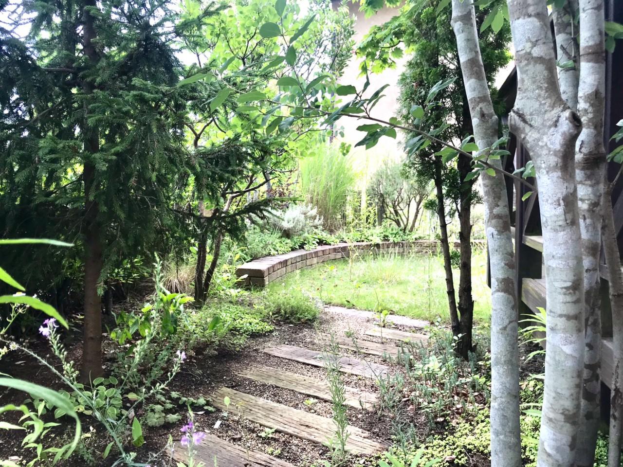 シンボルツリーはミモザ。木漏れ日のさす理想の住まい。